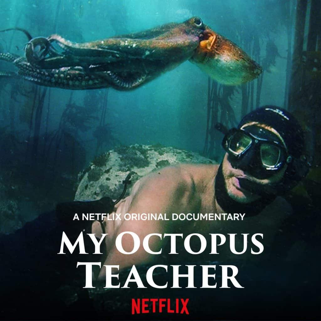 My Octopus Teacher from Netflix